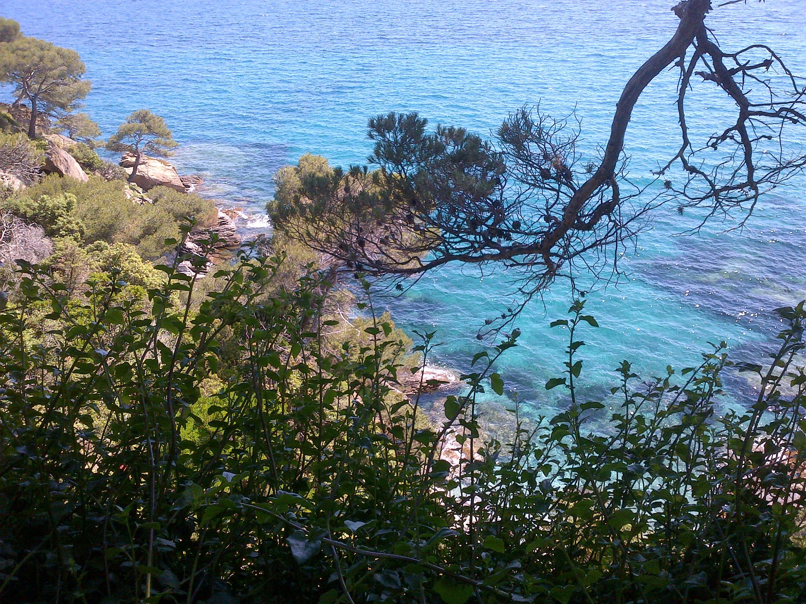 Rayol-Canadel-sur-Mer-20130607-00127.jpg